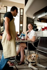 patron with guide dog talking with server