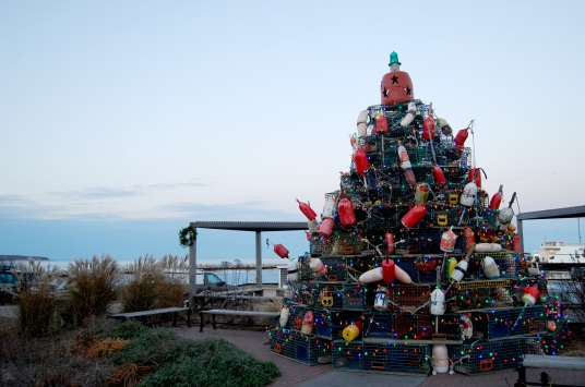 lobster-pot-tree